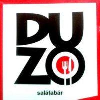 logo-duzo