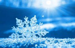 Téli szünet a KKI-ban